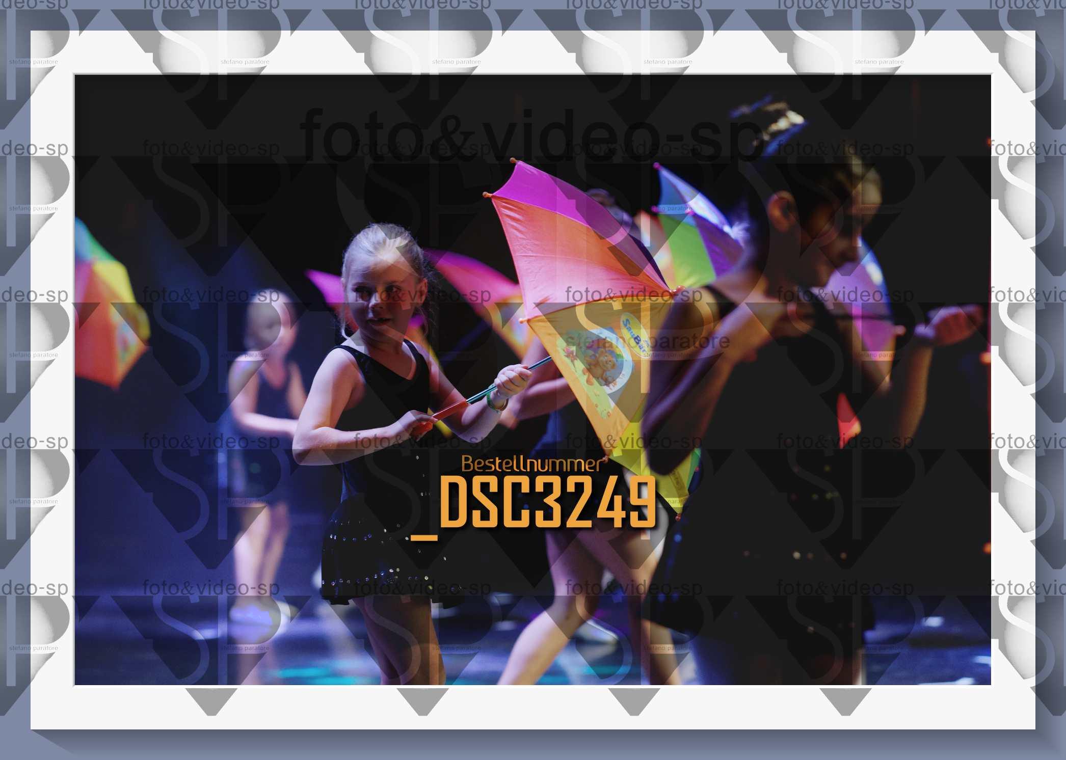 DSC3249