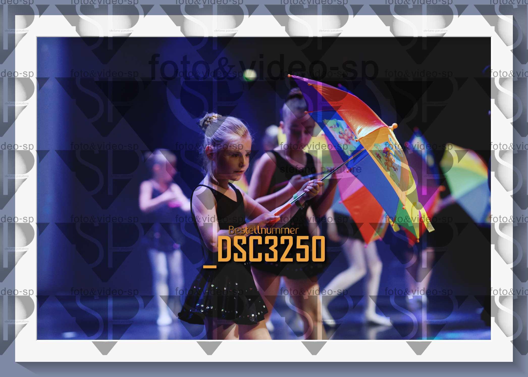 DSC3250