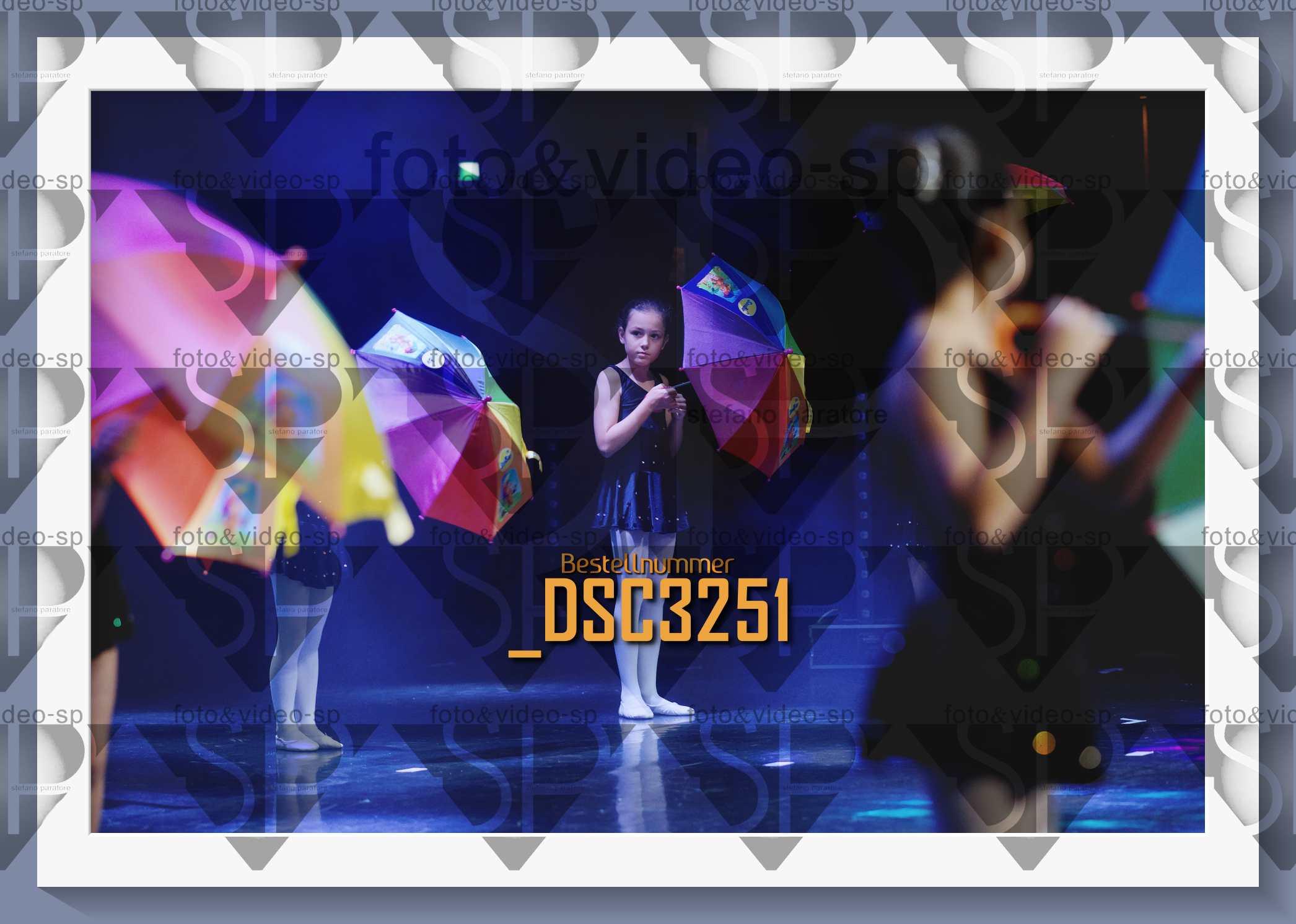 DSC3251