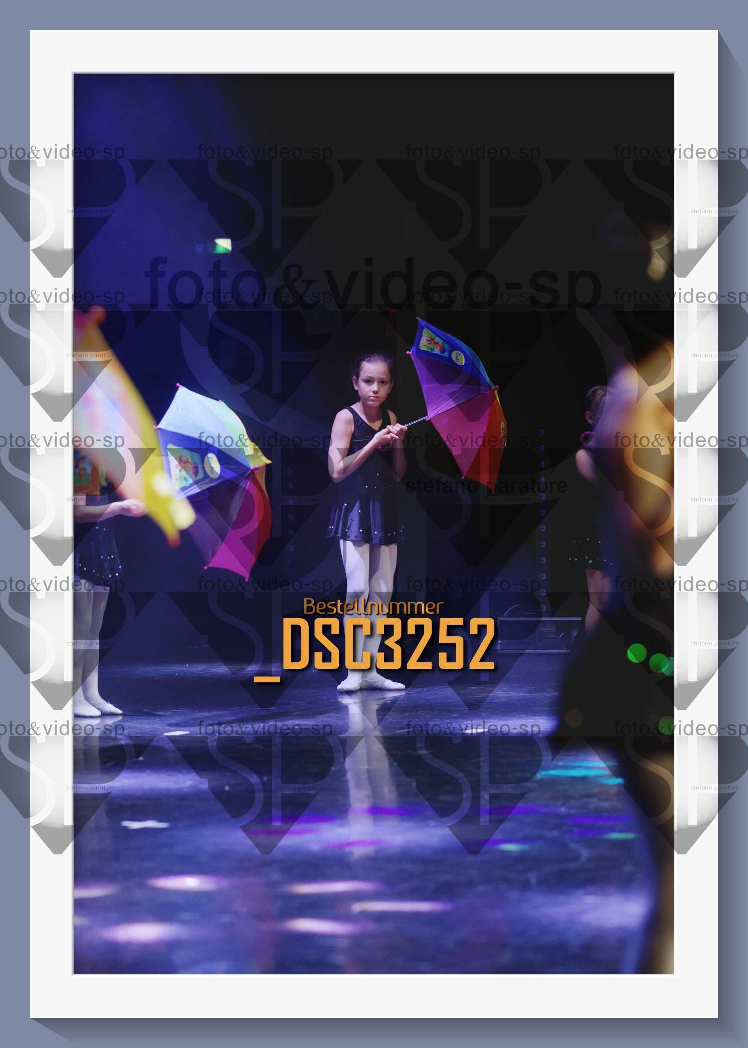 DSC3252