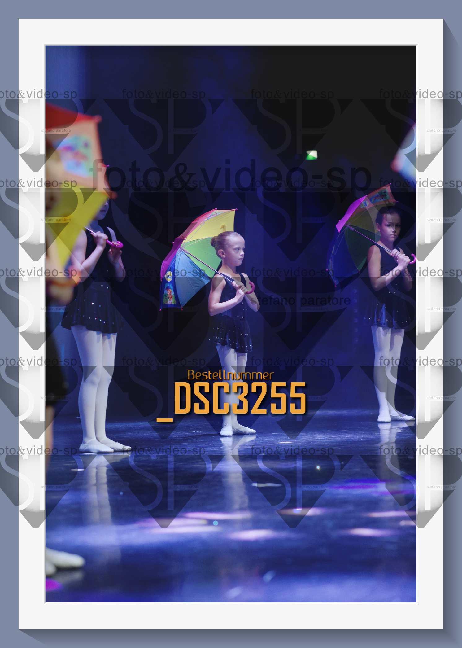 DSC3255