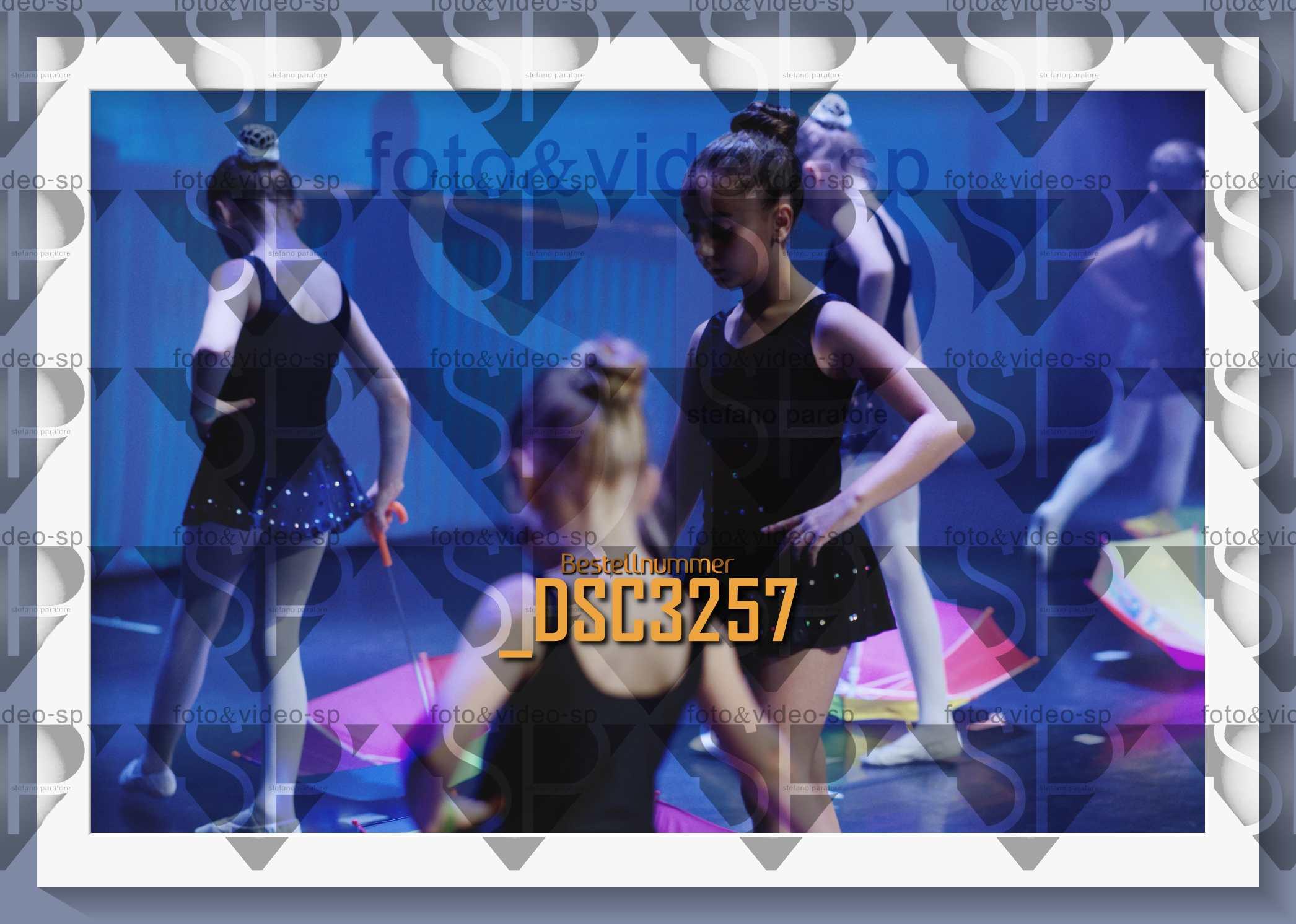 DSC3257