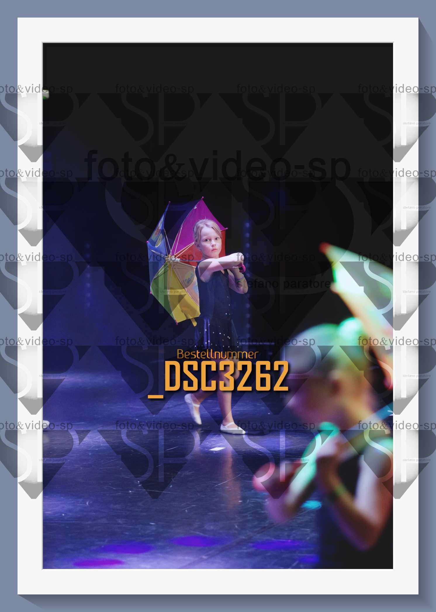 DSC3262
