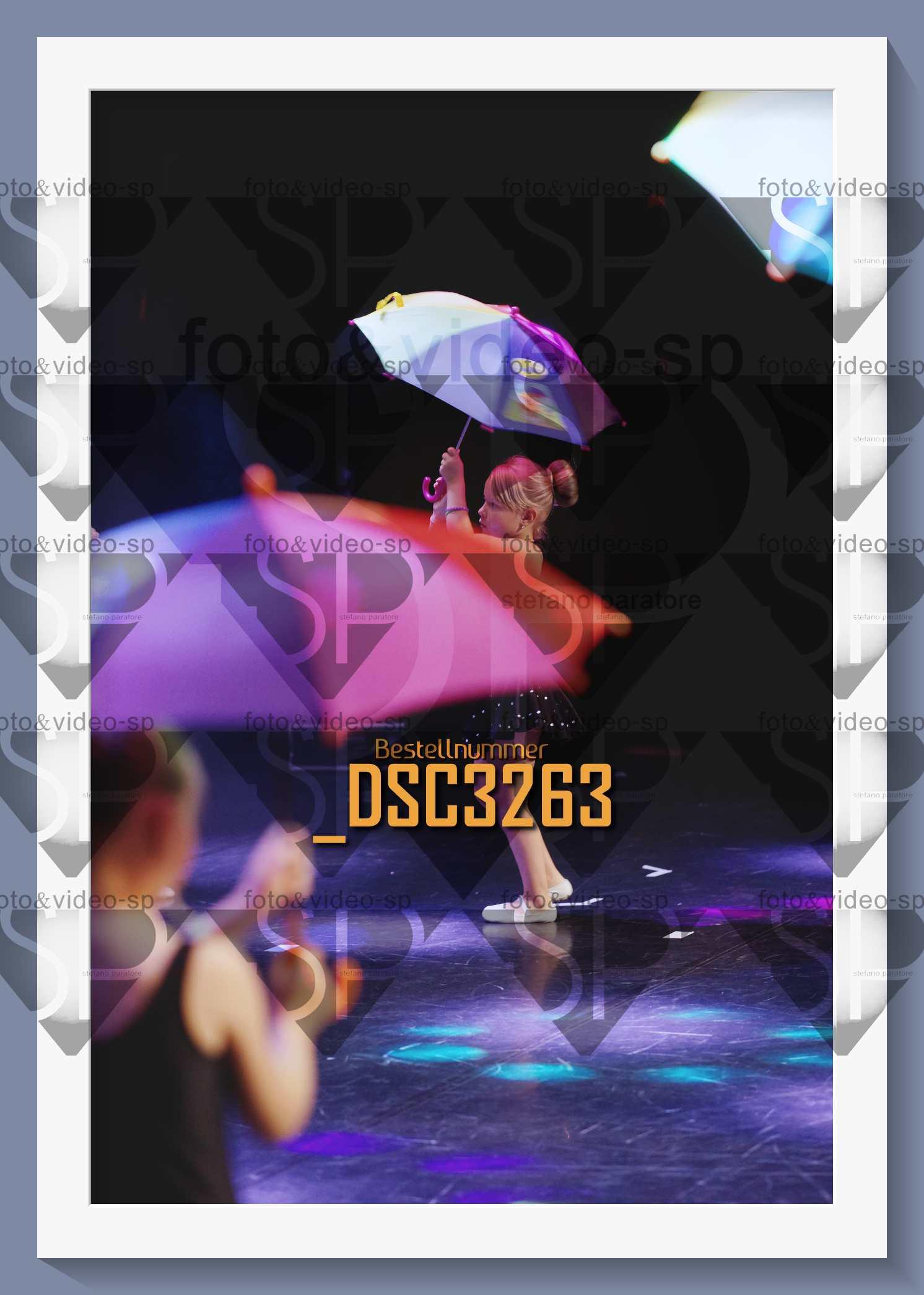DSC3263
