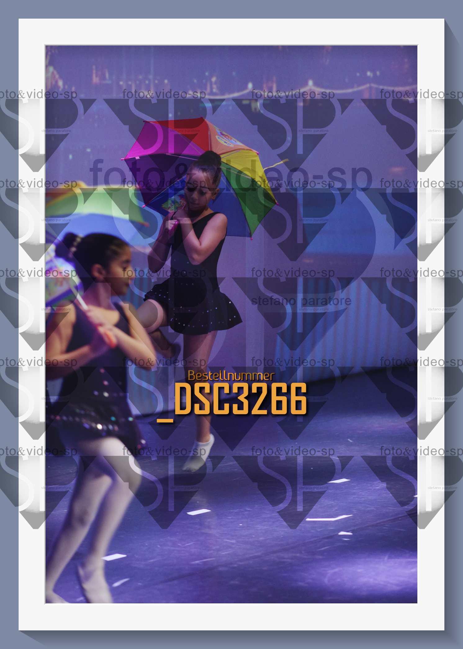 DSC3266