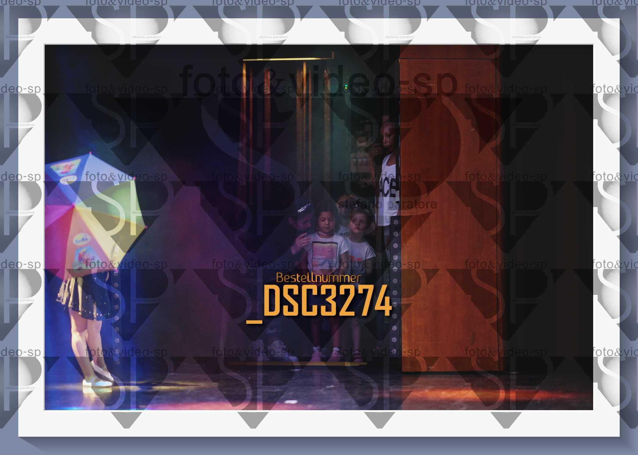 DSC3274