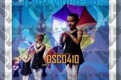 DSC0410