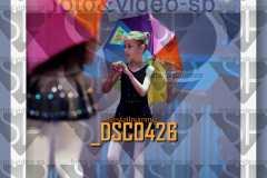 DSC0426