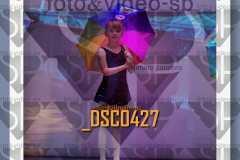 DSC0427