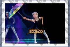 DSC0433