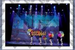 DSC0441