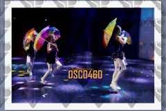 DSC0460