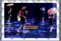 DSC0463