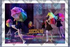 DSC0470