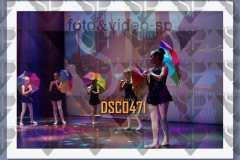 DSC0471