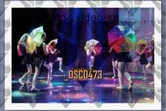 DSC0473
