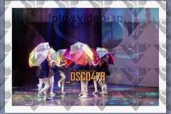 DSC0478