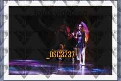 DSC3237