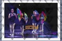 DSC3240