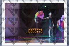 DSC3273