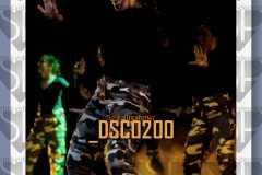DSC0200