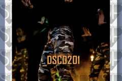 DSC0201