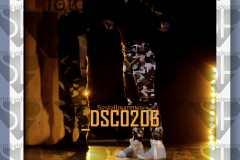 DSC0206