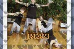 DSC2923