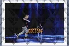 DSC2334