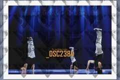DSC2384