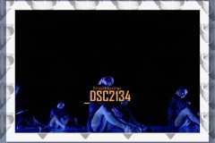 DSC2134