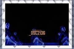 DSC2136
