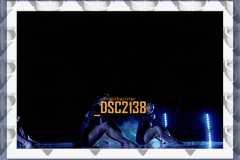 DSC2138
