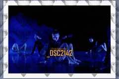 DSC2142