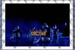 DSC2148