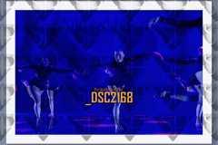 DSC2168