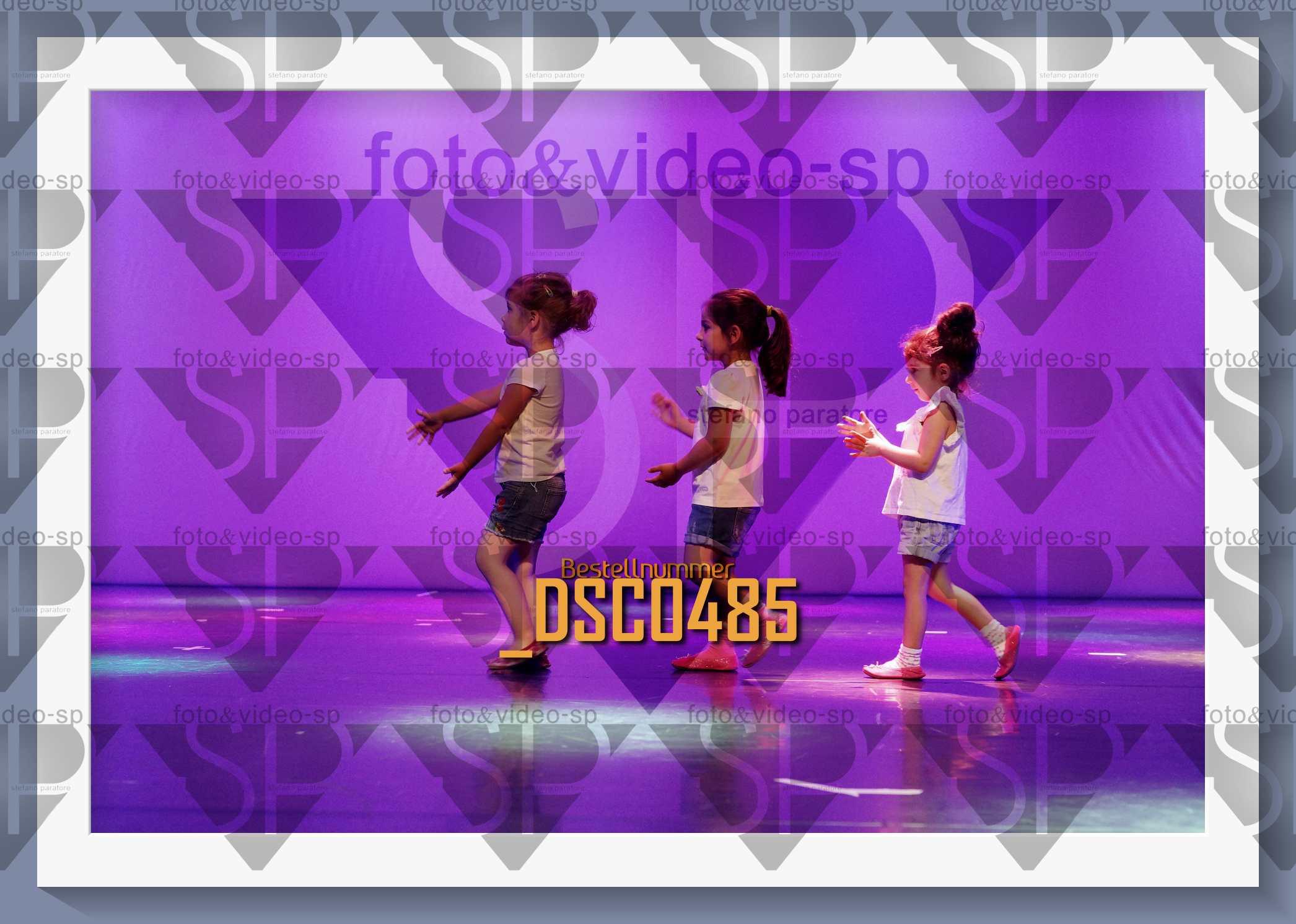 DSC0485