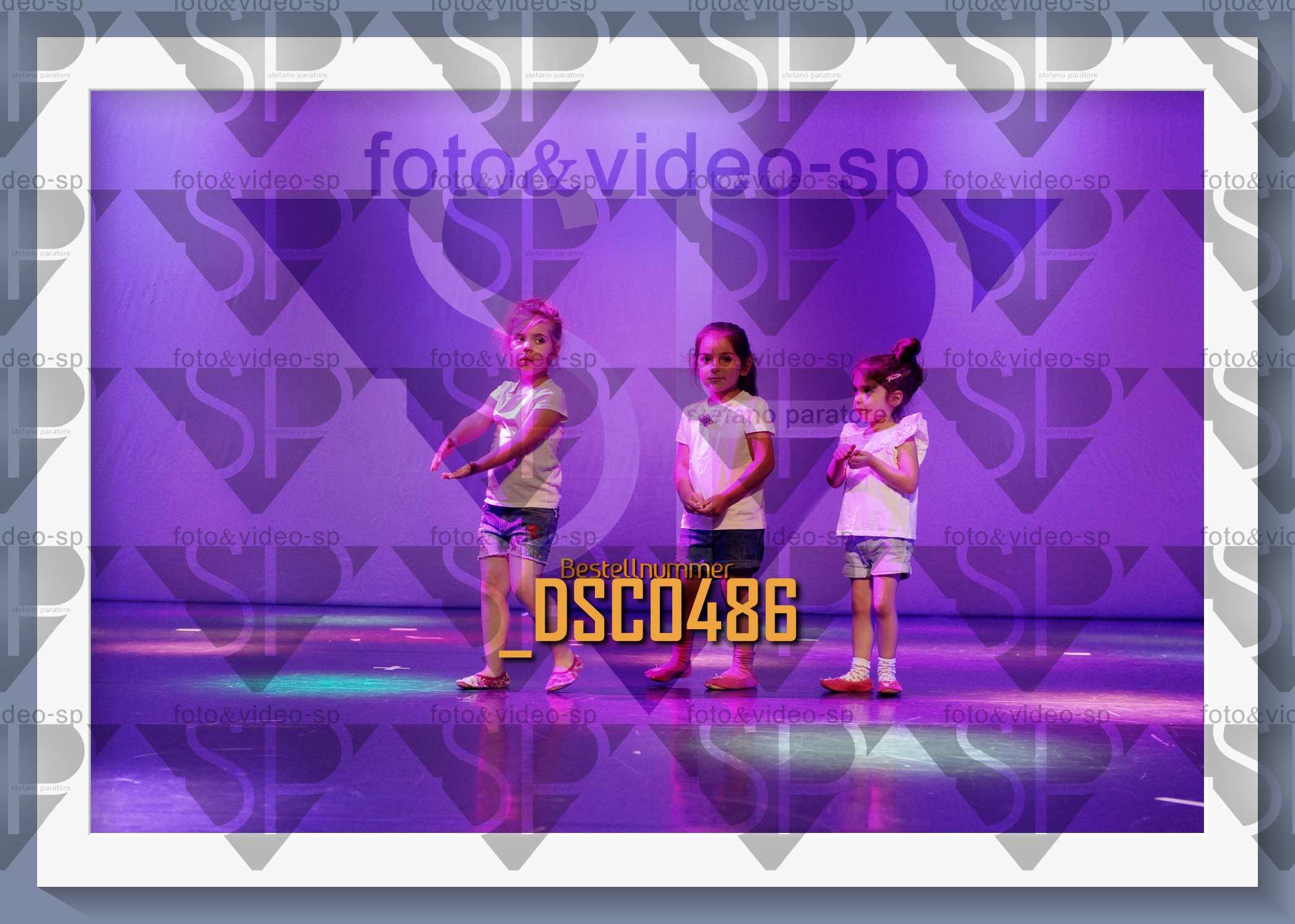 DSC0486
