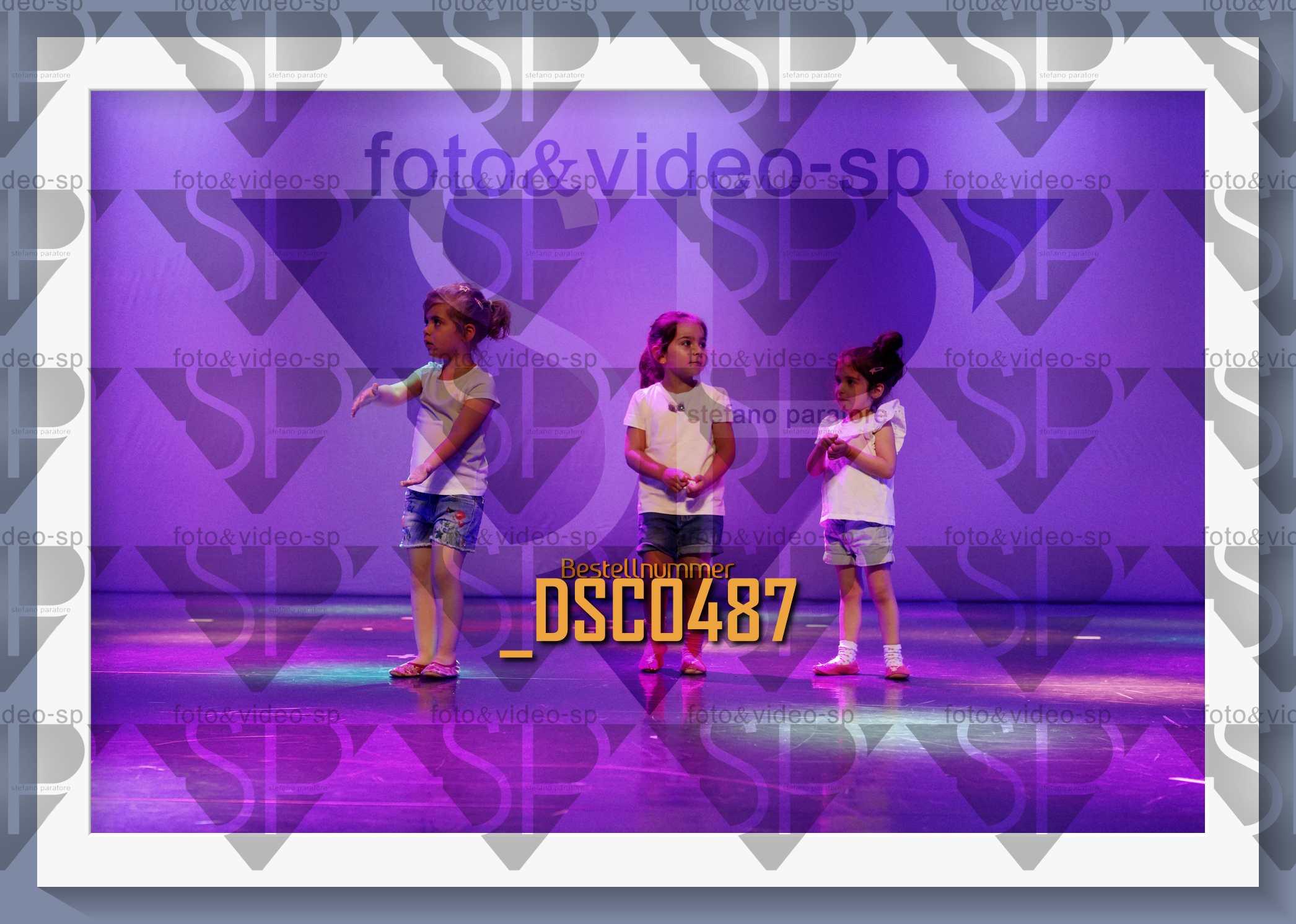 DSC0487