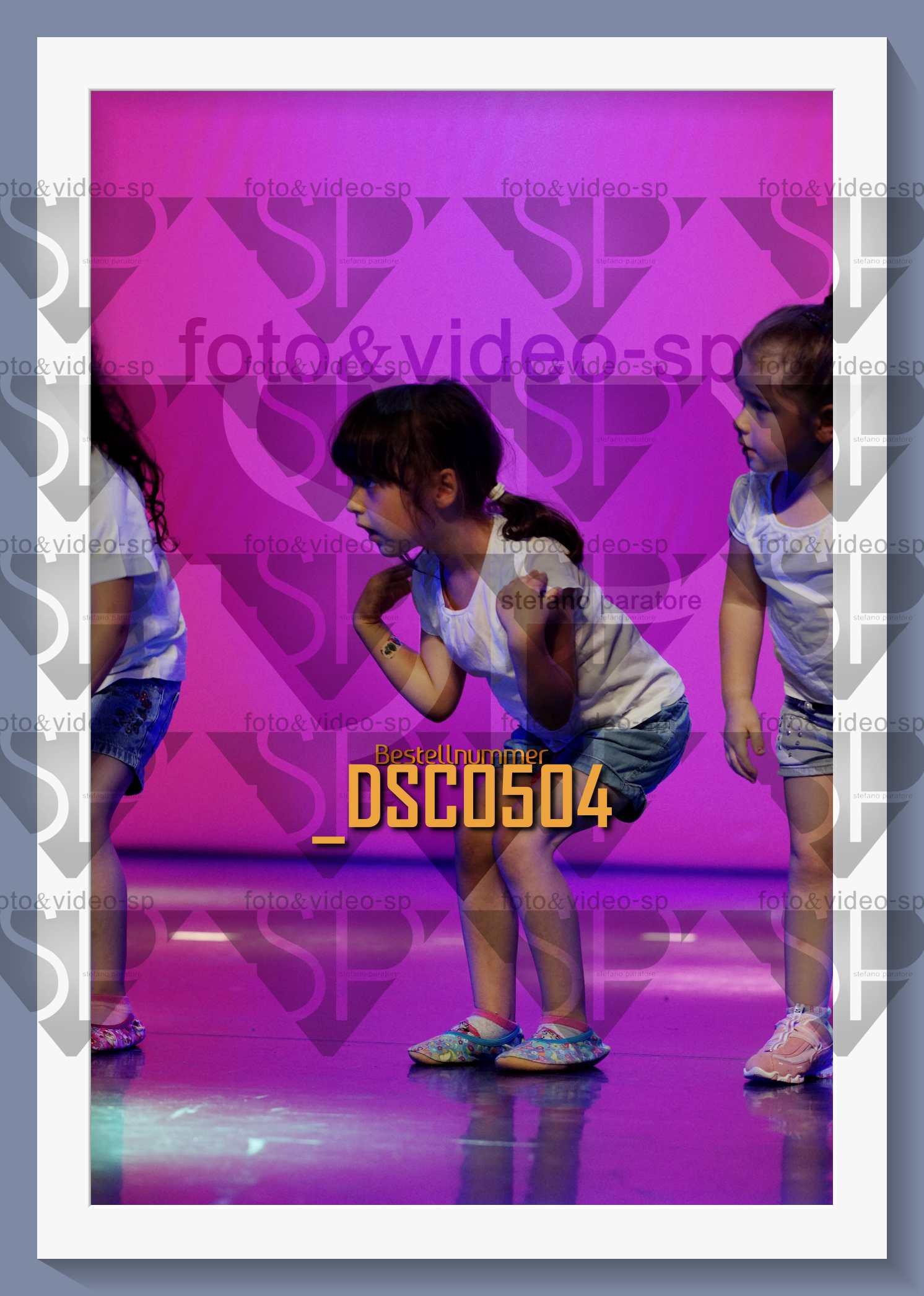 DSC0504