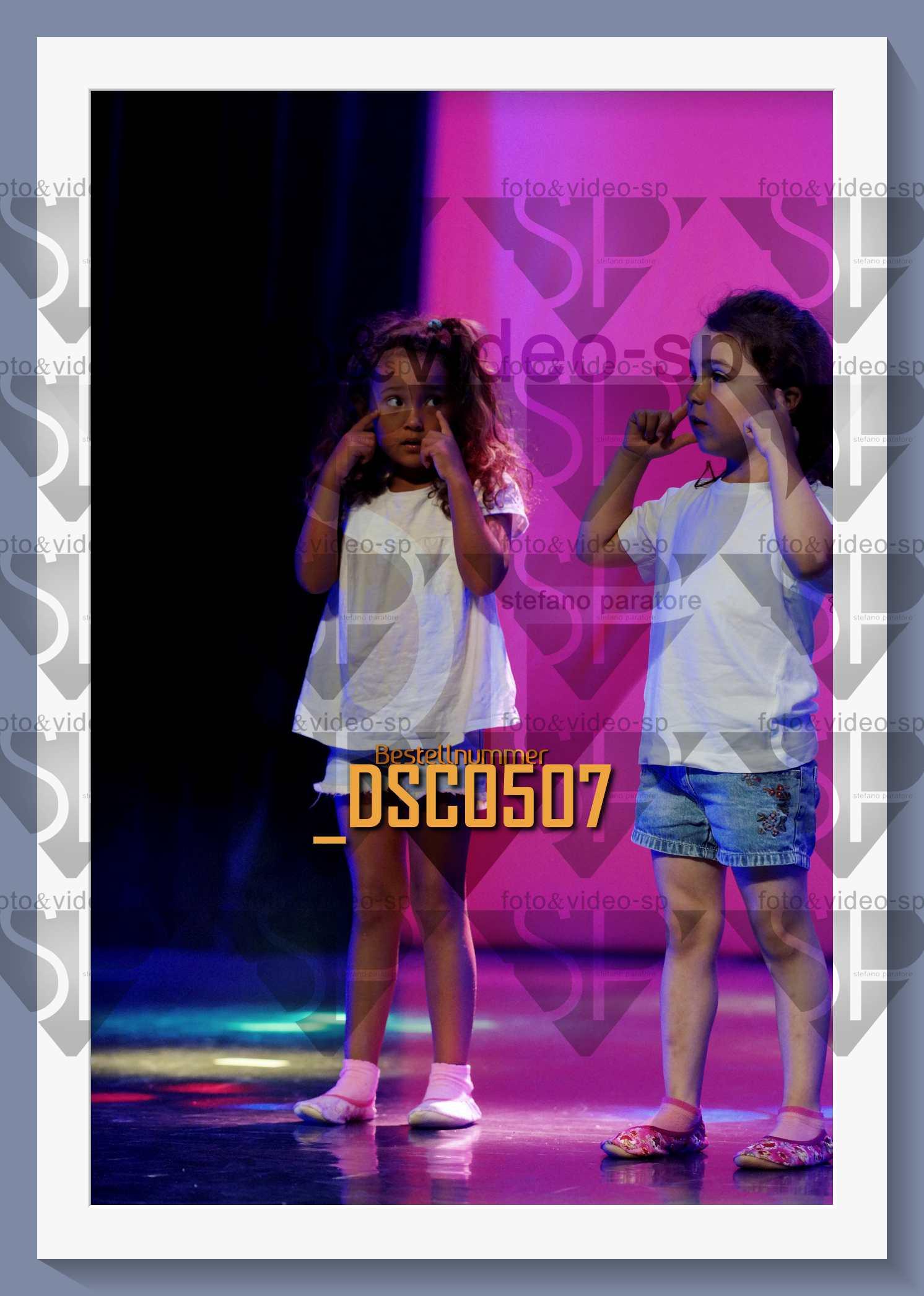 DSC0507