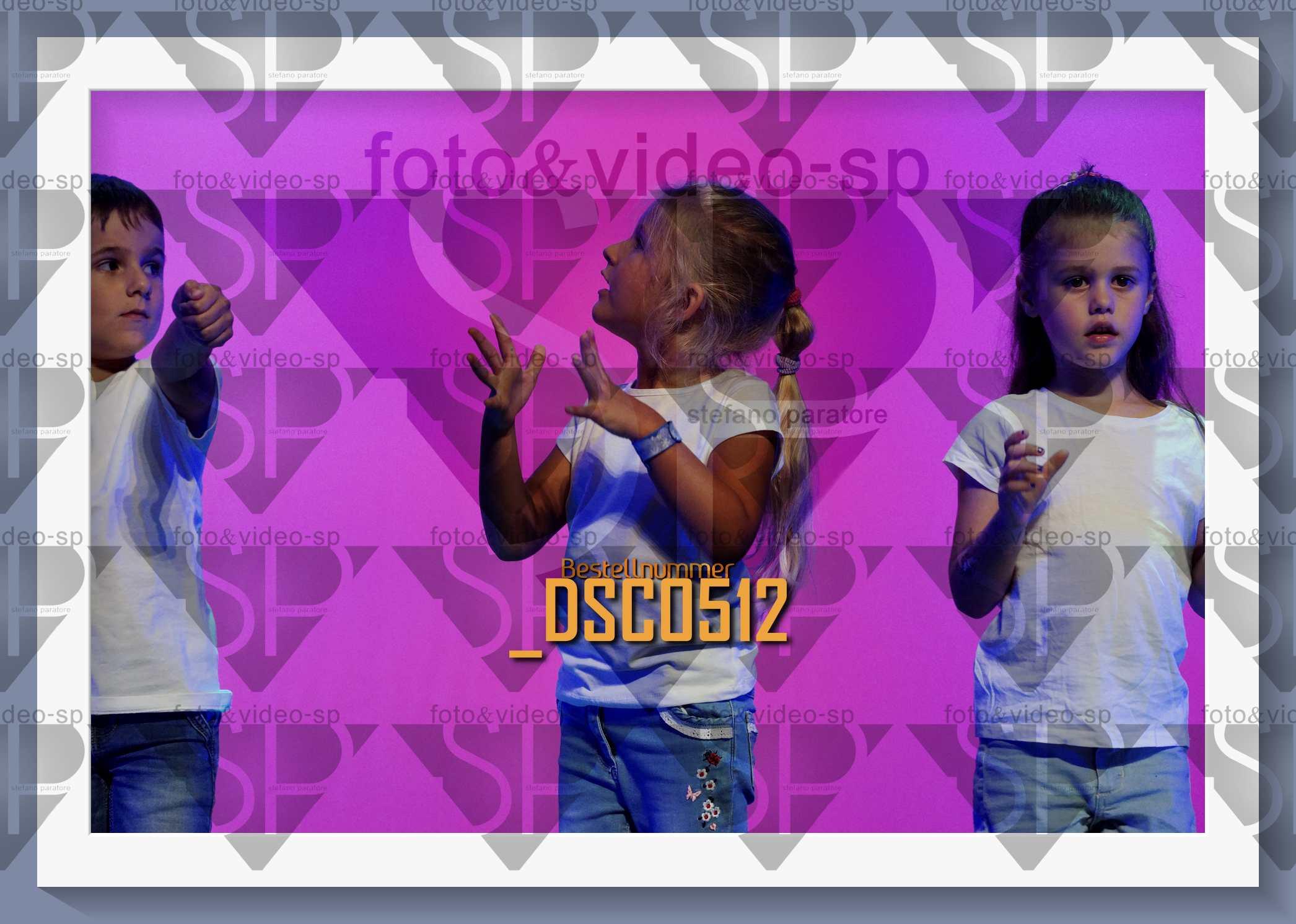 DSC0512