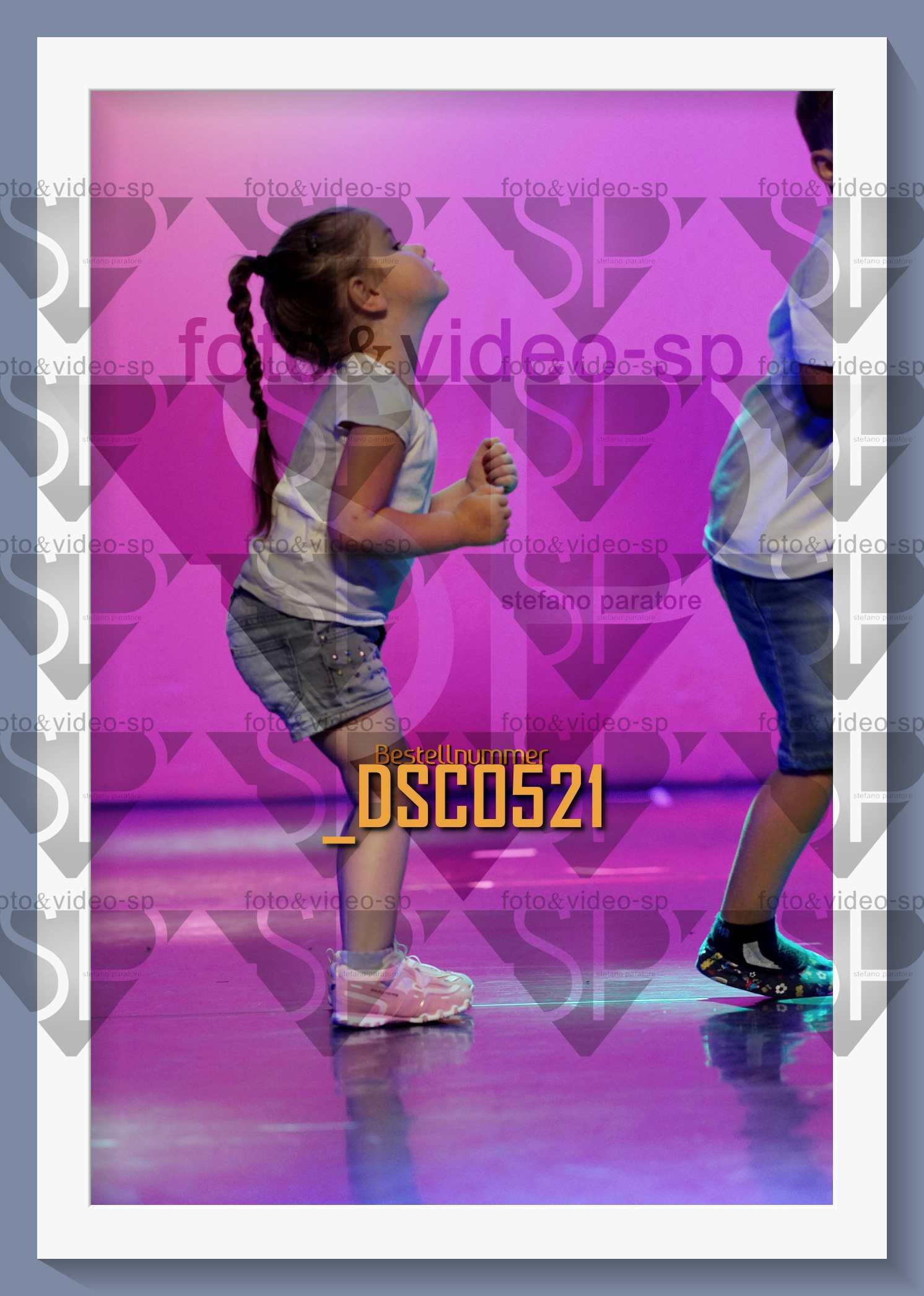 DSC0521