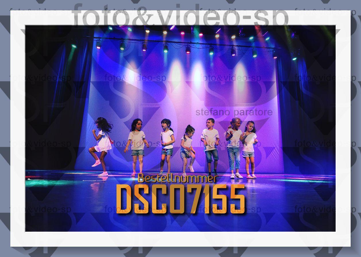 DSC07155