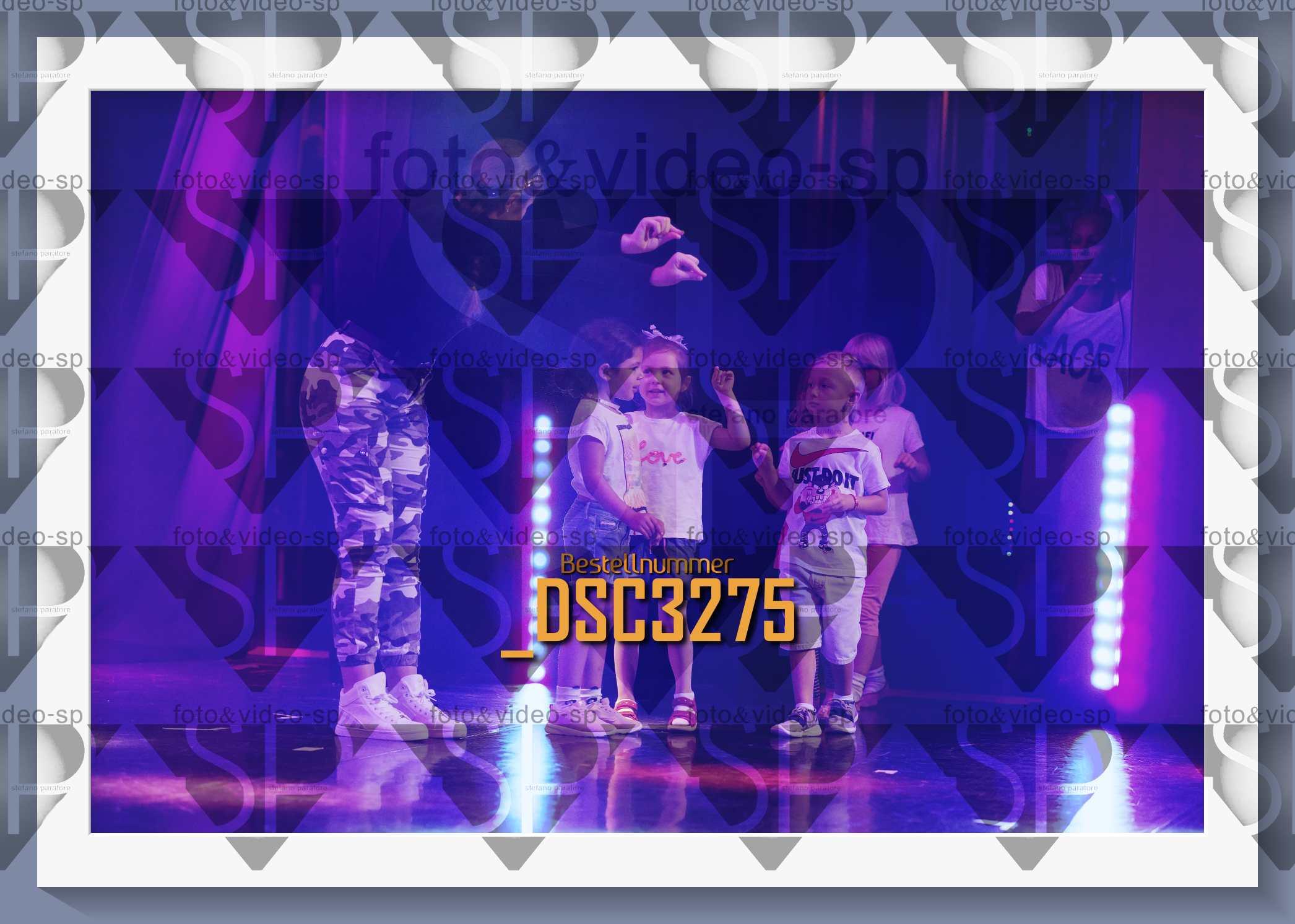 DSC3275