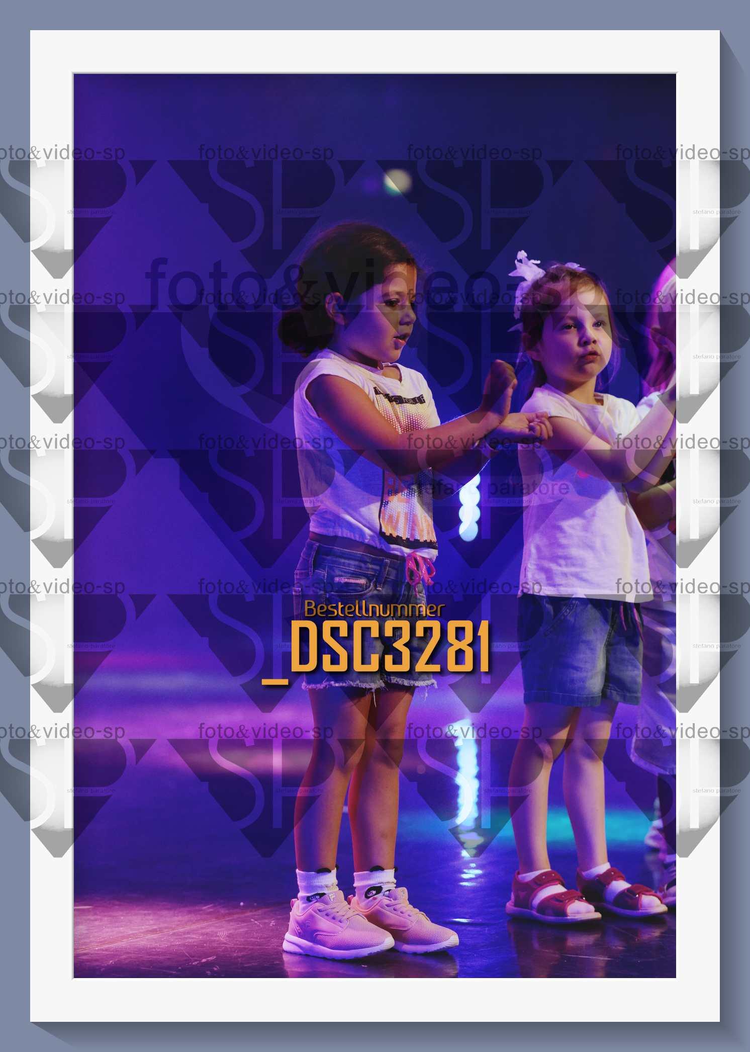 DSC3281