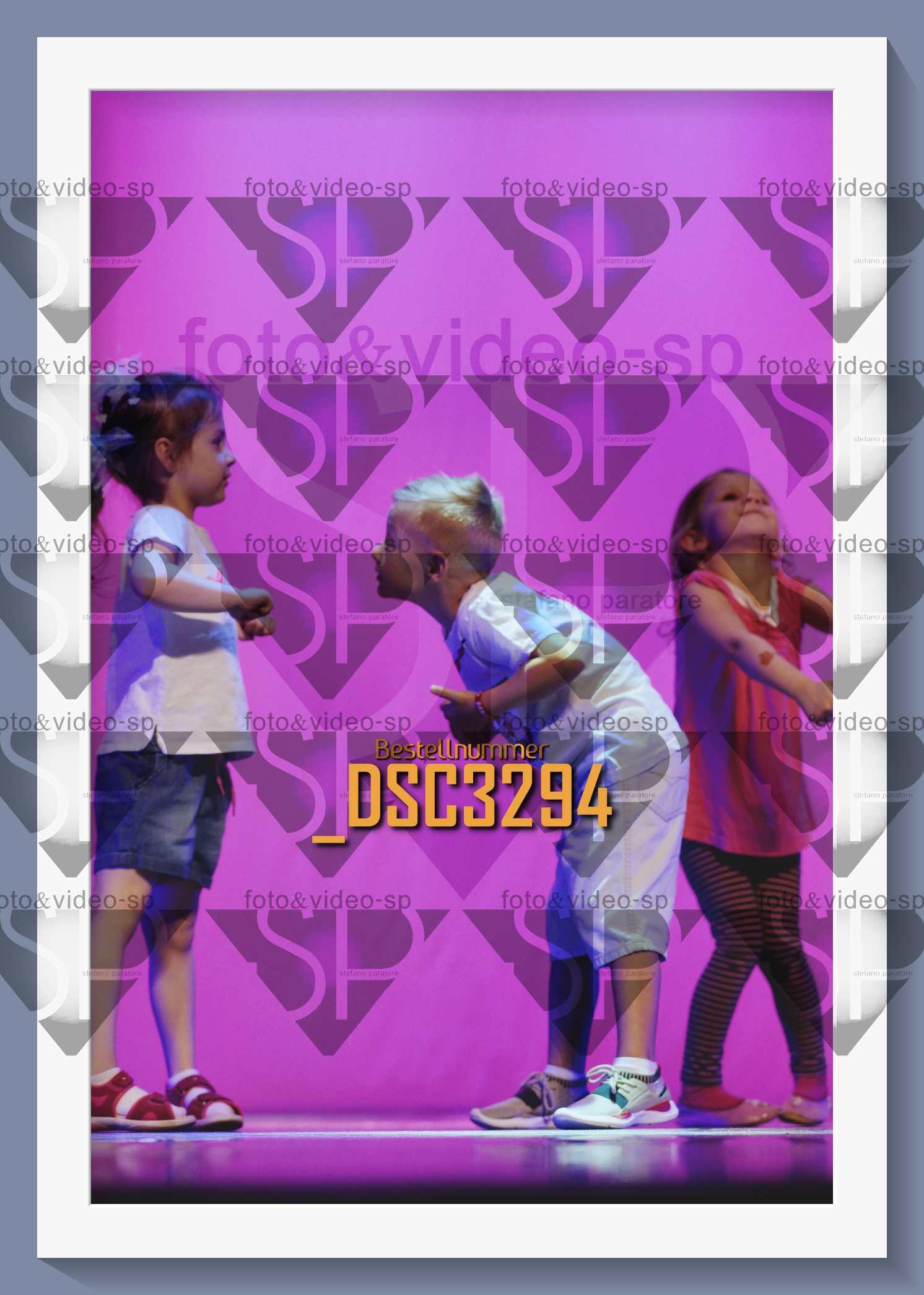 DSC3294