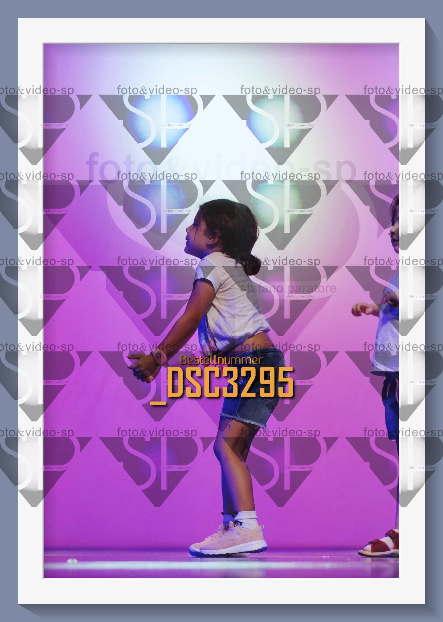 DSC3295