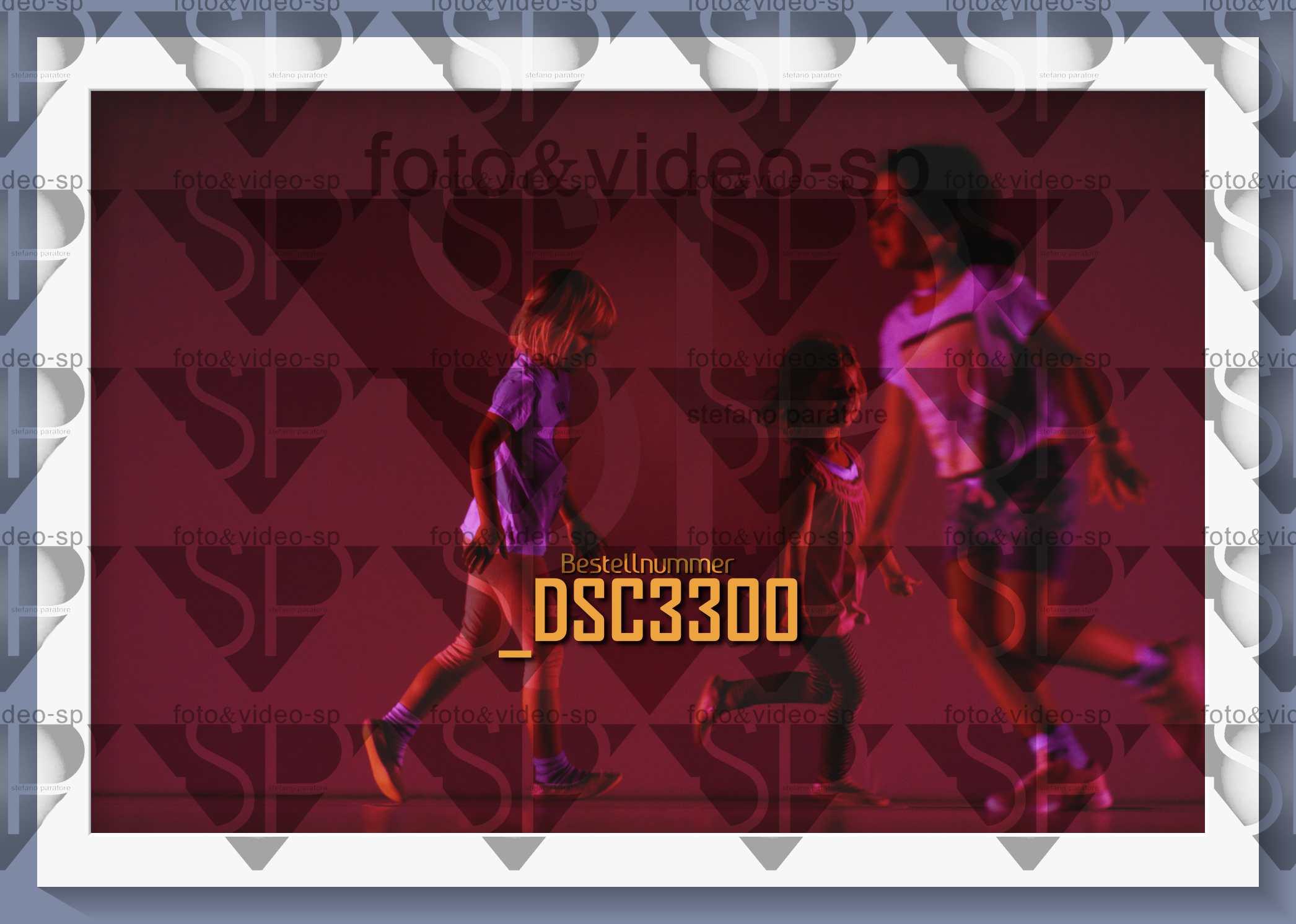 DSC3300