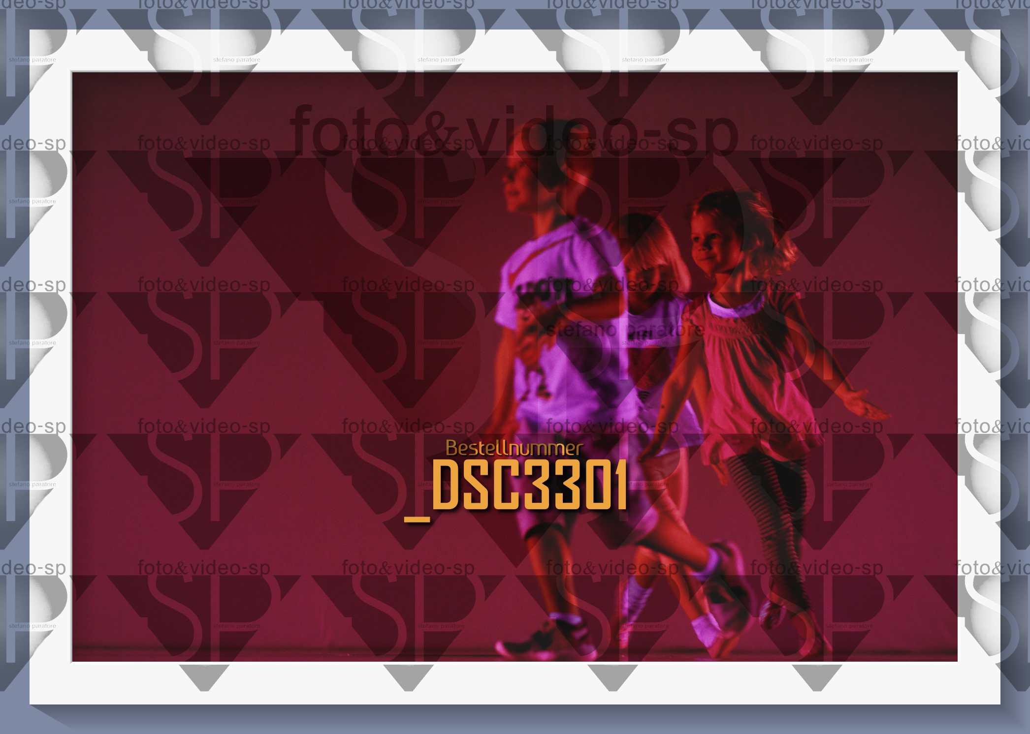 DSC3301